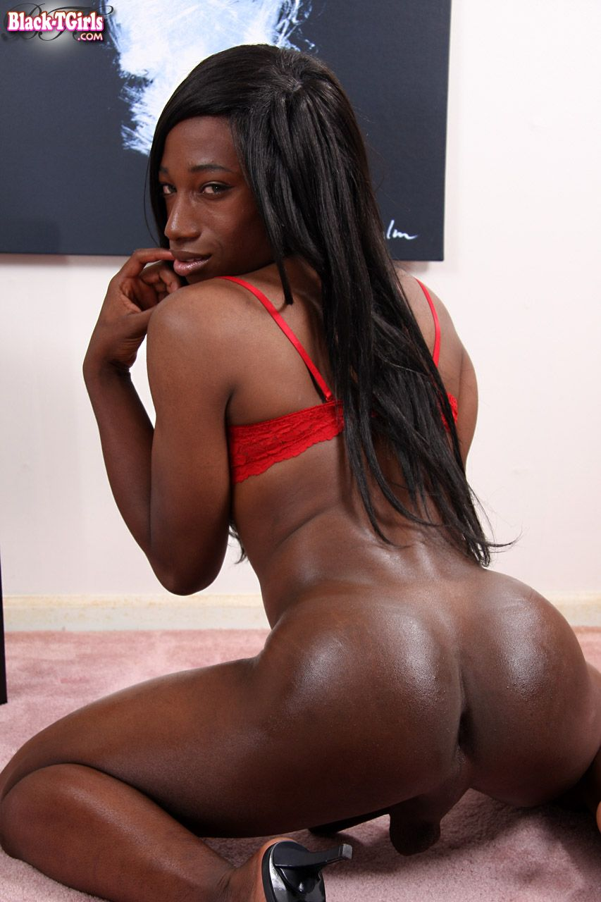 black tgirl - the original all-black shemale site. check it out now!
