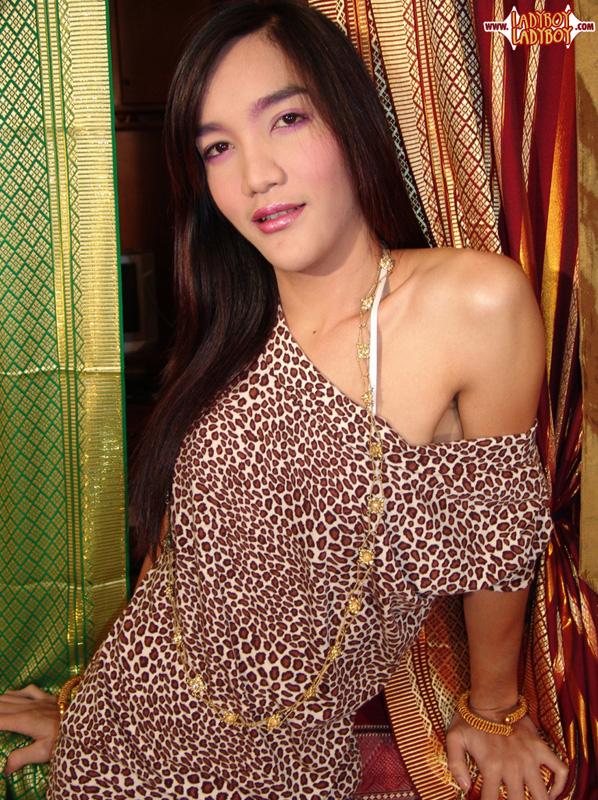 Thailand Ladyboy Holidays Angels in Paradise